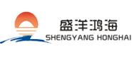 郑州盛洋鸿海房地产营销策划有限公司