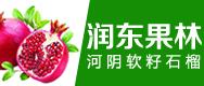 郑州润东果林有限公司
