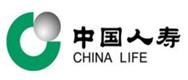中国人寿(陈)