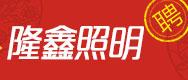 河南隆鑫照明工程有限公司